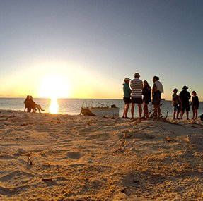 9 days abrolhos island discovery tours