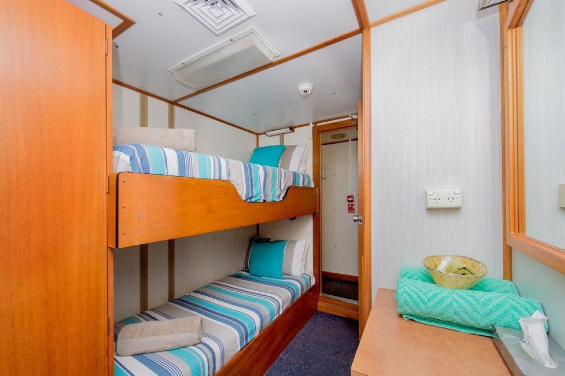 Lower Deck Single Bunk Cabin