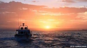 Departing Geraldton