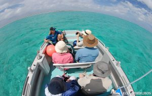Exploring in the Eco Abrolhos Tenders