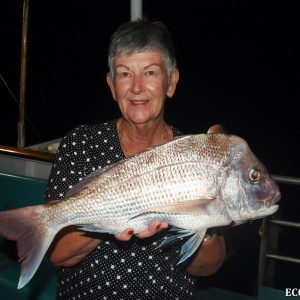 Snapper caught on the Eco Abrolhos at the Abrolhos Islands