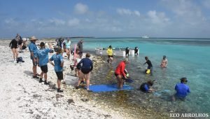 Easy water entry for snorkelling at the Abrolhos Islands