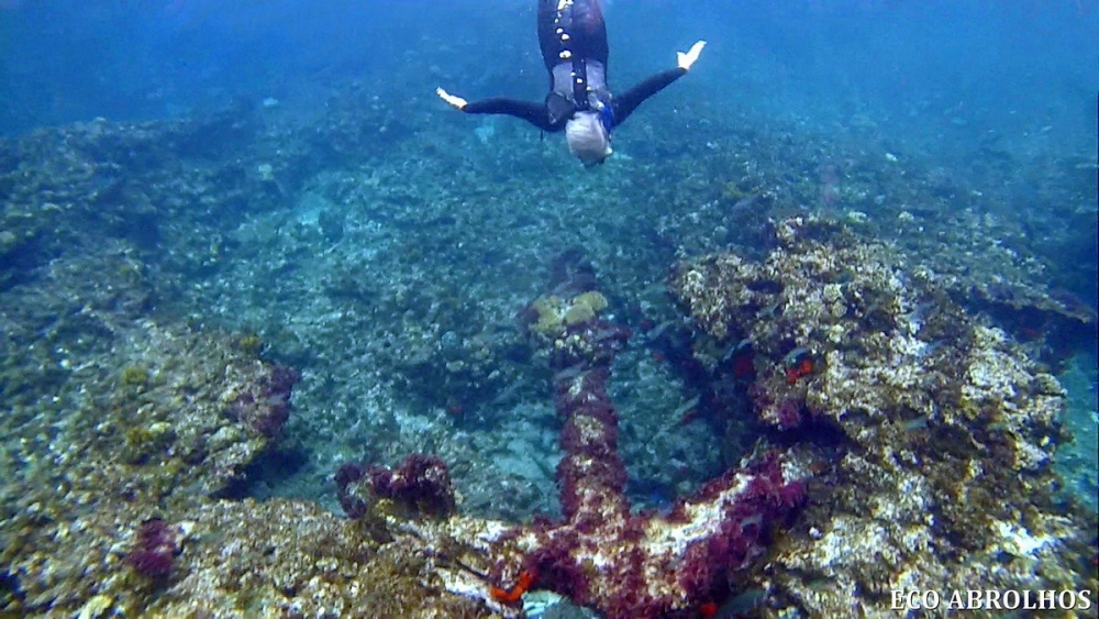 Anchor on the Wreck of the Batavia
