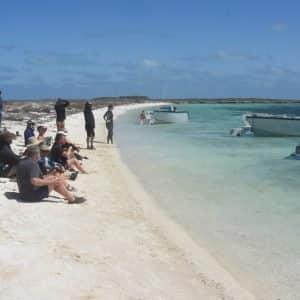 Eco ABrolhos Guests explore Morley Island