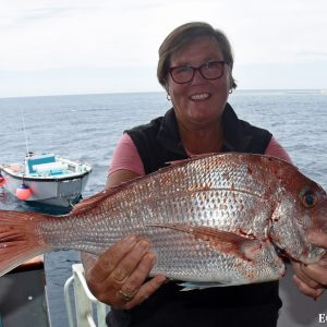 Snapper caught at the Abrolhos Islands