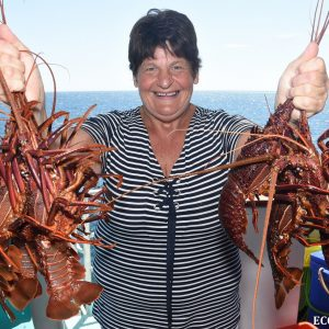 Crayfish caught at the Abrolhos Islands