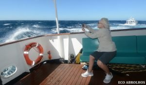 Cyclone Veronica swell makes for a lively crossing