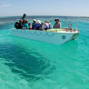 Glass Bottom boating at the Abrolhos Islands