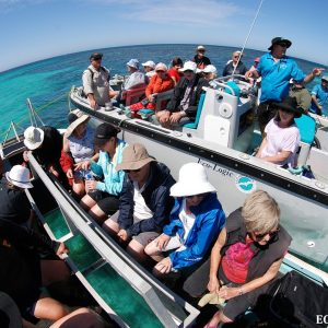 Tours at the Abrolhos Islands