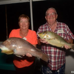 Fish caught in the Abrolhos Islands