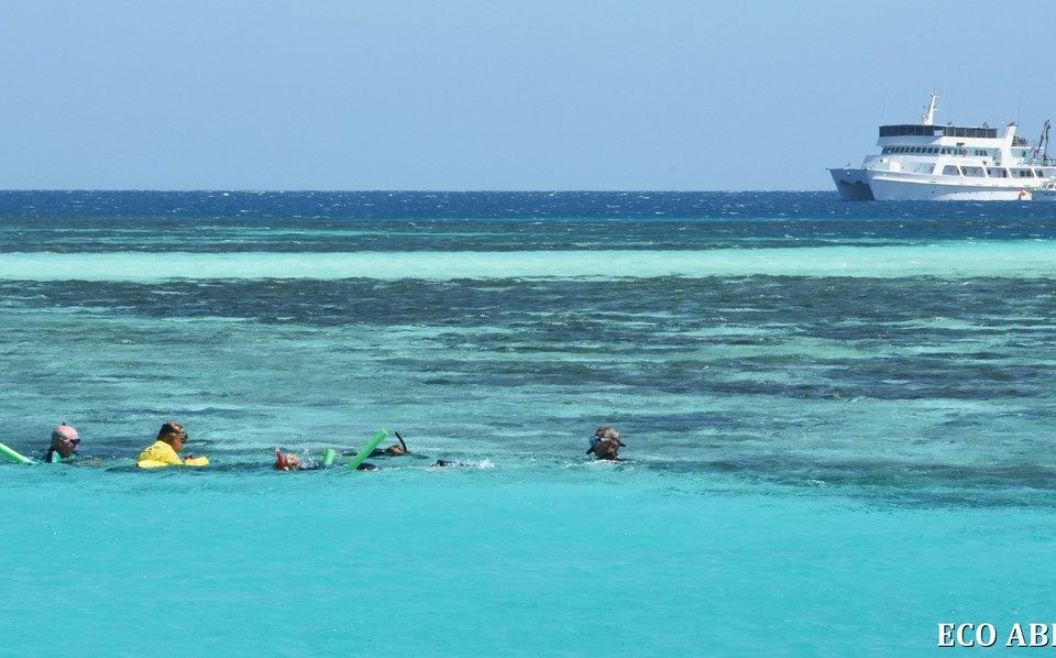 Snorkelling at the Abrolhos Islands
