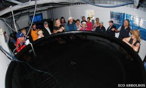 Latitude Perals hatchery at the Abrolhos Islands