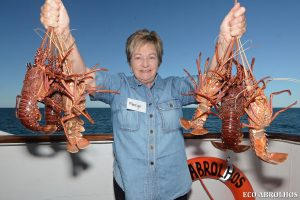 Crayfish aboard the Eco Abrolhos