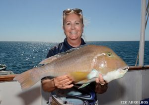Bald Chin Grouper caught by Eco Abrolhos Guest