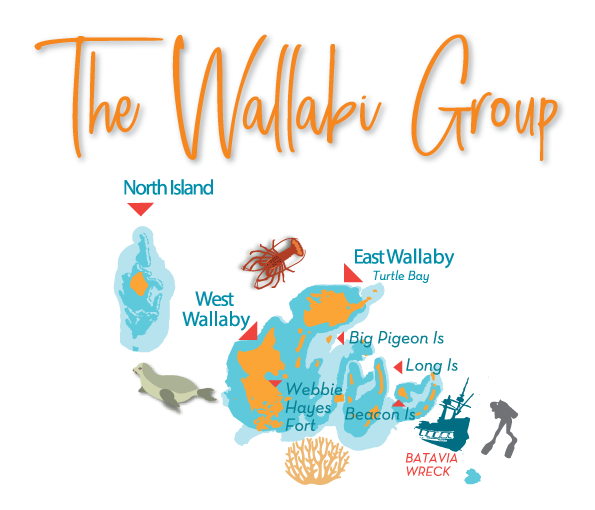 abrolhos-islands-wallabi-group