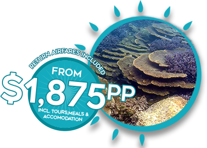 ECO-ABROLHOS-SUMMER-TOURS-BANNER-PRICE