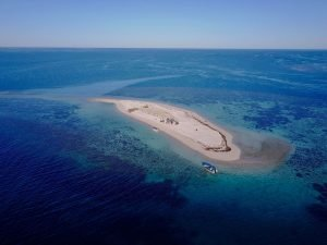 Little Sandy Island, Abrolhos Islands